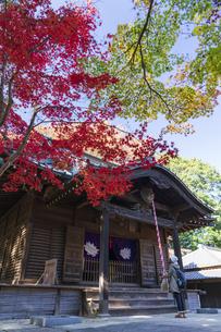 古刹を彩る平林寺の紅葉の写真素材 [FYI04633742]