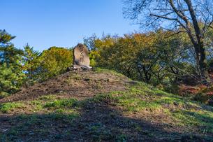 古刹を彩る平林寺の紅葉の写真素材 [FYI04633748]