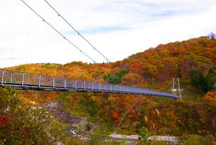 やまびこ吊り橋の写真素材 [FYI04633761]