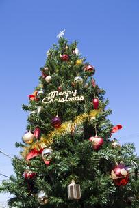 クリスマスツリーの写真素材 [FYI04634014]