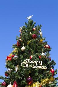 クリスマスツリーの写真素材 [FYI04634045]
