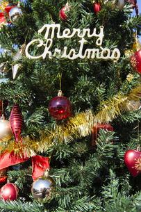 クリスマスツリーの写真素材 [FYI04634046]