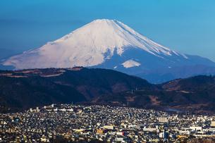 弘法山公園から見た富士山の写真素材 [FYI04634061]
