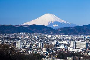 弘法山公園から見た富士山の写真素材 [FYI04634063]
