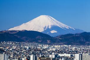 弘法山公園から見た富士山の写真素材 [FYI04634064]