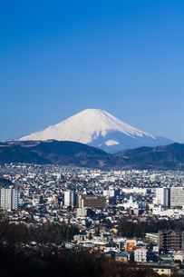 弘法山公園から見た富士山の写真素材 [FYI04634065]