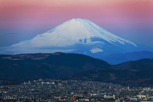 弘法山公園から見た富士山の写真素材 [FYI04634076]