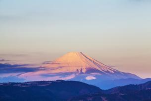 弘法山公園から見た富士山の写真素材 [FYI04634080]