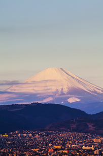 弘法山公園から見た富士山の写真素材 [FYI04634081]