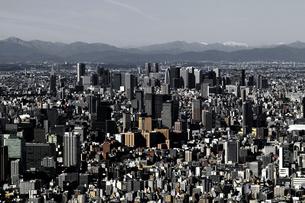 東京の新宿区の高層ビル群の全景の写真素材 [FYI04634623]