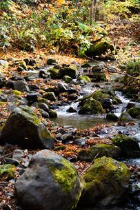 秋の山奥の渓流の写真素材 [FYI04634648]