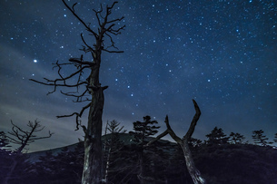 御岳県立自然公園の星空の写真素材 [FYI04634846]