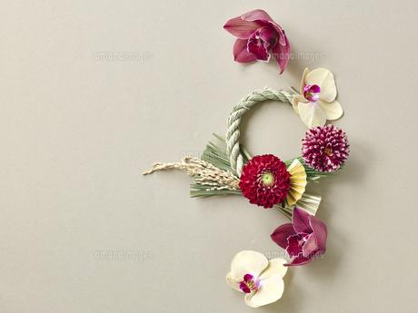 しめ縄飾りと花の写真素材 [FYI04634921]