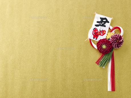 しめ縄飾りの写真素材 [FYI04634955]
