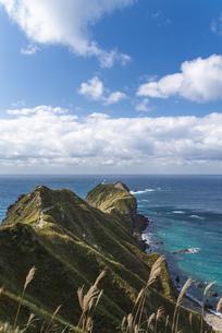 神威岬の写真素材 [FYI04635034]