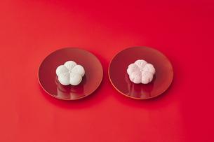 紅白の和菓子の写真素材 [FYI04635188]