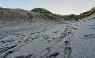 館山砂丘 砂山の写真素材 [FYI04635293]