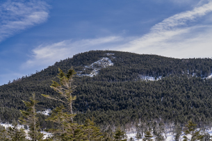 北八ヶ岳 坪庭の雪景色の写真素材 [FYI04635323]