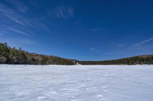 北八ヶ岳の雨池 雪景色の写真素材 [FYI04635338]