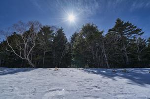 北八ヶ岳の雨池 雪景色の写真素材 [FYI04635339]