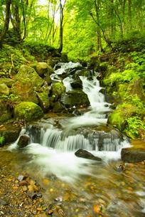 渓流の写真素材 [FYI04635428]
