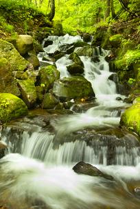 渓流の写真素材 [FYI04635429]