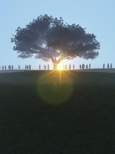 丘に立つ一本の大樹に射す逆光と群衆のイラスト素材 [FYI04635554]