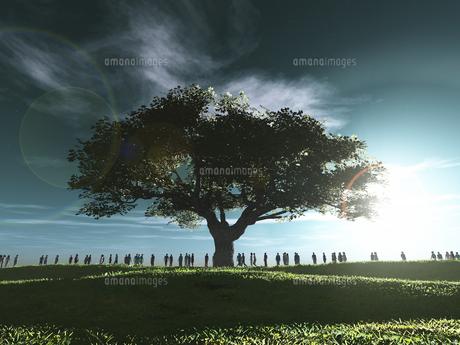 丘に立つ一本の大樹に射す逆光と群衆のイラスト素材 [FYI04635556]
