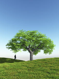 丘に立つ一本の大樹を眺めるビジネスマンのイラスト素材 [FYI04635559]