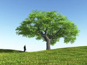 丘に立つ一本の大樹を眺めるビジネスマンのイラスト素材 [FYI04635560]