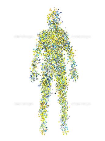 カラフルな多面体で形作られた身体のイラスト素材 [FYI04635562]