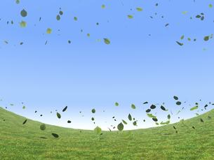 湾曲する草原と風に舞う緑の葉のイラスト素材 [FYI04635582]
