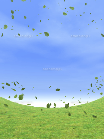 湾曲する草原と風に舞う緑の葉のイラスト素材 [FYI04635583]