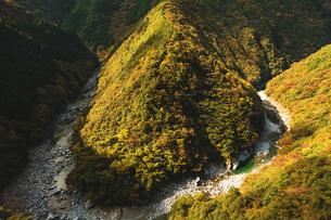 【徳島県 三好市】祖谷渓からみる秋の山の自然風景の写真素材 [FYI04635797]
