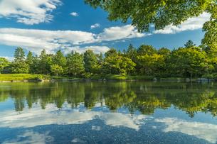 昭和記念公園の美しい日本庭園の写真素材 [FYI04635837]