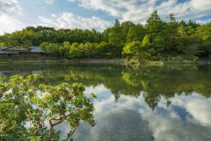 昭和記念公園の美しい日本庭園の写真素材 [FYI04635842]
