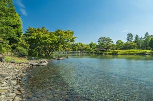 昭和記念公園の美しい日本庭園の写真素材 [FYI04635854]