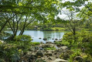 昭和記念公園の美しい日本庭園の写真素材 [FYI04635855]