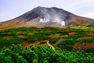 旭岳の紅葉の写真素材 [FYI04635943]