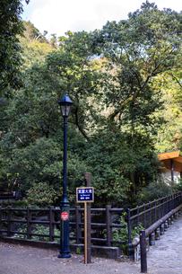 箕面大滝と書かれた案内板の写真素材 [FYI04636097]