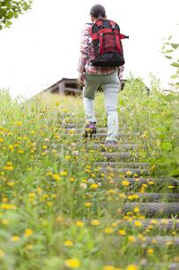 山を歩く女性の後姿の写真素材 [FYI04636915]