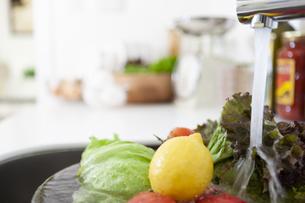洗われている野菜や果物の写真素材 [FYI04637847]
