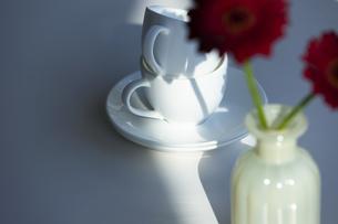 ティーカップとガーベラの写真素材 [FYI04637932]