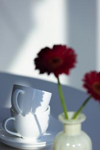 ティーカップとガーベラの写真素材 [FYI04637933]