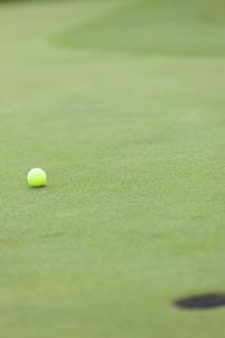 グリーンを転がるゴルフボールの写真素材 [FYI04637950]