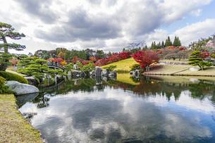 鏡面に映る紅葉風景が美しい三景園の写真素材 [FYI04638797]