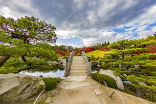 三景園 美しく手入れされた日本庭園の写真素材 [FYI04638806]