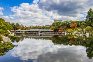 鏡面に映る紅葉風景が美しい三景園の写真素材 [FYI04638811]