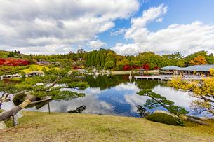 鏡面に映る紅葉風景が美しい三景園の写真素材 [FYI04638820]