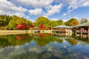 鏡面に映る紅葉風景が美しい三景園の写真素材 [FYI04638826]